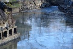 2/9 平、日中も厳しい冷え込みで、松ヶ岡公園のひょうたん池に氷が張る